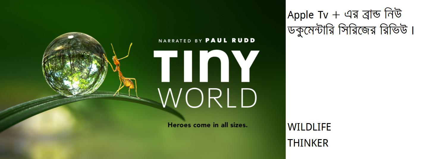 """অ্যাপল টিভি প্লাসের ব্রান্ড নিউ সিরিজ """"টাইনি ওয়ার্ল্ড' বা 'ক্ষুদ্র বিশ্বের' রিভিউ"""